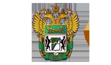 Красноярская таможня